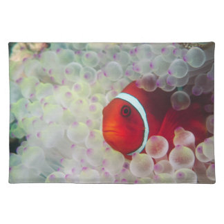 Paupau New Guinea Great Barrier Reef Placemats