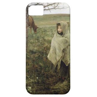 Pauvre Fauvette iPhone 5 Cases