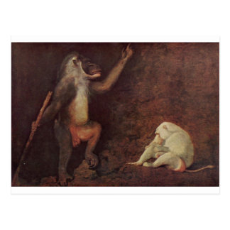 Pavian and Albino Makake by George Stubbs Postcard