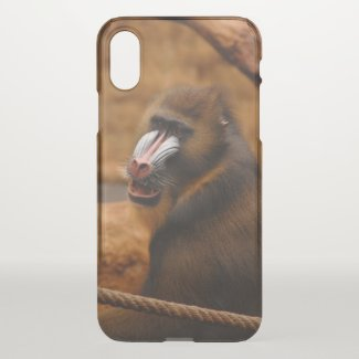 Pavian / Baboon - iPhone X Case