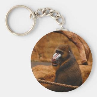 Pavian/babuino Llavero Redondo Tipo Pin