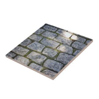 Pavimentación de piedra con el musgo teja