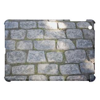 Pavimentación de piedra con el musgo