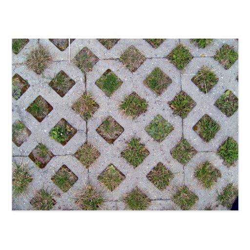 Pavimentadora de la hierba con el modelo a cuadros tarjetas postales