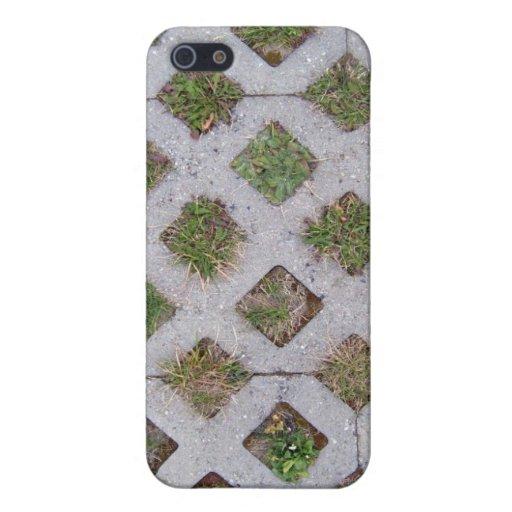 Pavimentadora de la hierba con Pern a cuadros iPhone 5 Fundas
