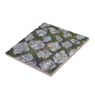 Pavimento de piedra viejo con el fondo del musgo y teja