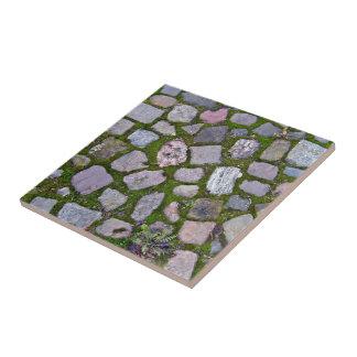 Pavimento de piedra viejo con el musgo y la hierba teja  ceramica