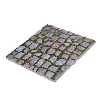 Pavimento del guijarro con el musgo que crece entr azulejos cerámicos