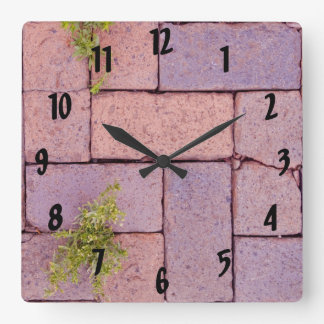 Paving Stones and Weeds In The Walkway Photograph Square Wall Clock