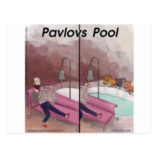 Pavlov's Pool Funny Cartoon Postcards