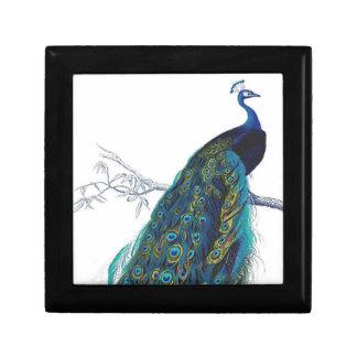 Pavo real azul con las plumas de cola hermosas caja de regalo