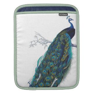 Pavo real azul con las plumas de cola hermosas mangas de iPad