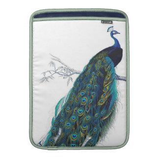 Pavo real azul con las plumas de cola hermosas funda macbook air