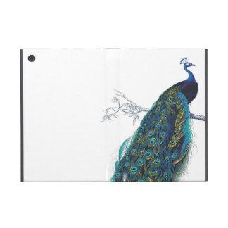 Pavo real azul con las plumas de cola hermosas iPad mini funda
