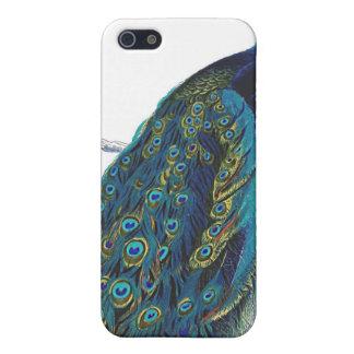 Pavo real azul con las plumas de cola hermosas iPhone 5 funda