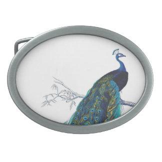 Pavo real azul con las plumas de cola hermosas hebilla de cinturón oval