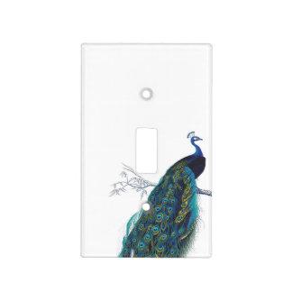 Pavo real azul con las plumas de cola hermosas placas para interruptor