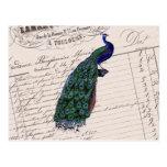 Pavo real azul elegante francés del vintage postal