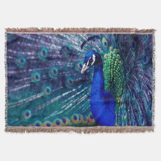 Pavo real azul manta