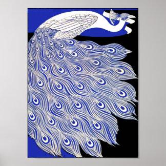 Pavo real azul poster