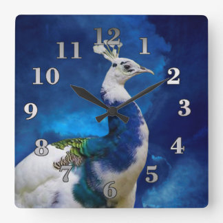 Pavo real azul y blanco reloj cuadrado
