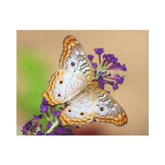 Pavo real blanco en púrpura impresion en lona