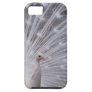 Pavo real blanco funda para iPhone SE/5/5s