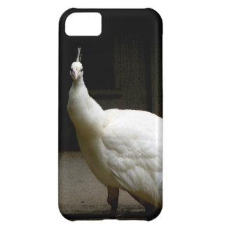 Pavo real blanco hermoso funda iPhone 5C