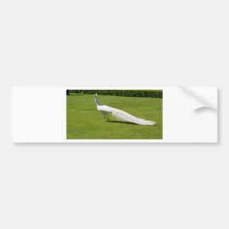 Pavo real blanco pegatina para auto