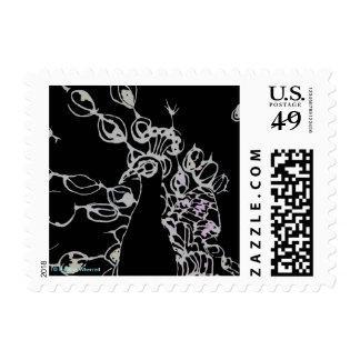Pavo real blanco y negro contemporáneo del © P Sellos Postales