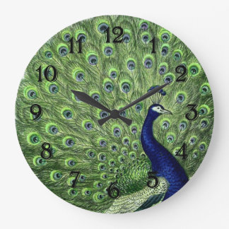 Pavo real bonito reloj redondo grande