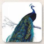 Pavo real colorido elegante azul del vintage posavasos
