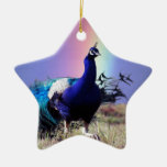 Pavo real de la alegría ornamentos de navidad