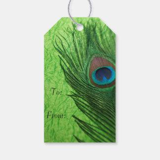 Pavo real de la verde lima etiquetas para regalos