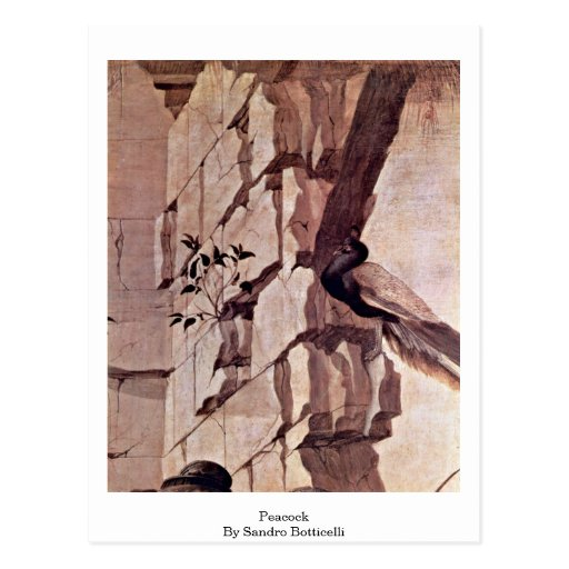 Pavo real de Sandro Botticelli Postal