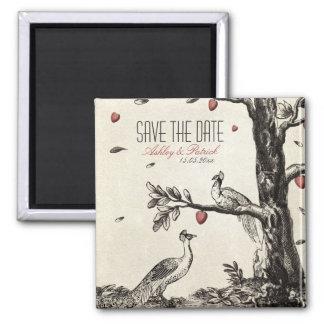 Pavo real del amor del vintage en un árbol de amor imán cuadrado