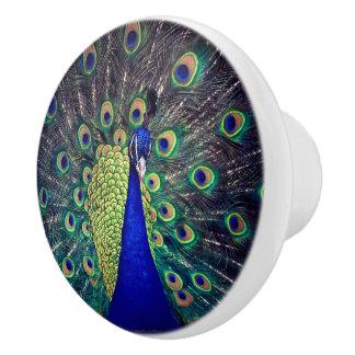 Pavo real del azul de cobalto pomo de cerámica