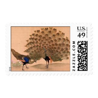 Pavo real del vintage sellos