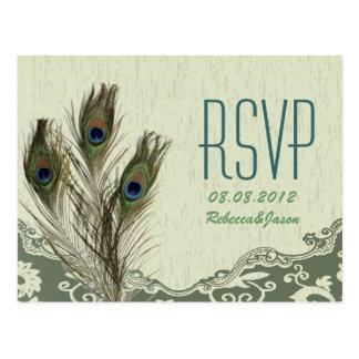 pavo real elegante del verde del país del vintage postales