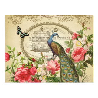 Pavo real elegante lamentable francés del vintage tarjeta postal