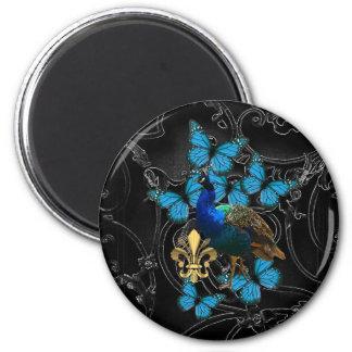 Pavo real elegante y mariposas azules en negro imanes de nevera