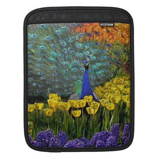 Pavo real en tulipanes fundas para iPads