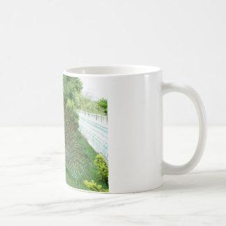 Pavo real en una taza del jardín
