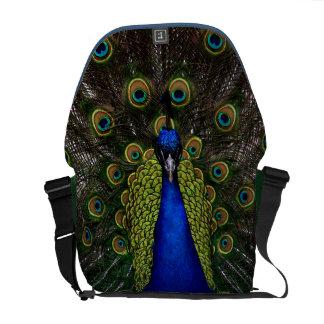 Pavo real espléndido bolsas de mensajeria