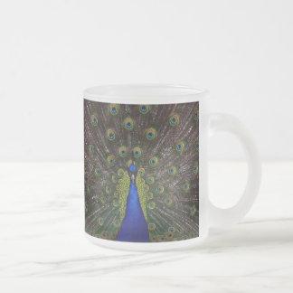 Pavo real espléndido taza