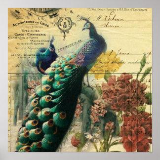 pavo real femenino del vintage de la flor de la póster