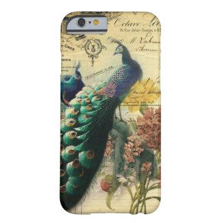 pavo real floral femenino del vintage de la moda funda para iPhone 6 barely there