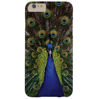 Pavo real funda de iPhone 6 plus barely there
