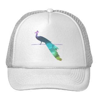 Pavo real gorras