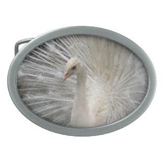 Pavo real imperial hebilla cinturón oval